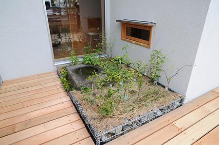 「地域の自生植物を育てる小さな庭(一坪里山)をもつこと